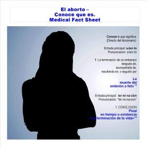 2016_AbortionWhatIsIt_FactSheet_Span_Icon