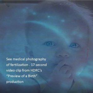 1_VideoClipPreviewOfBirthFertilizationHDRC.org_1